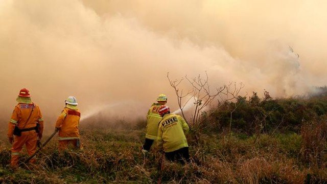 Australian fire fighters deliberately joined up two large fires near the Blue Mountains as part of efforts to control bushfires across New South Wales