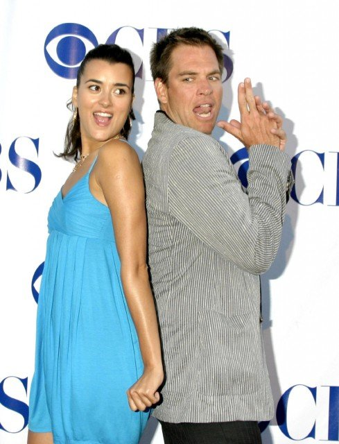 On July 10 2013 it was reported by CBS that Cote de Pablo will be leaving NCIS for undisclosed reasons 489x640 photo