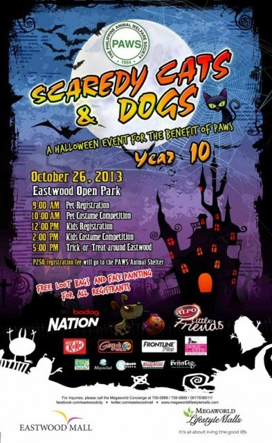 Scaredy Cats and Dogs 2013