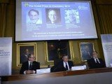 The Nobel Prize in Chemistry 2013 was awarded jointly to Martin Karplus, Michael Levitt and Arieh Warshe