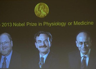 The Nobel Prize in Physiology or Medicine 2013 was awarded jointly to James E. Rothman, Randy W. Schekman and Thomas C. Südhof