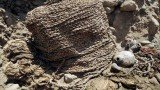 Two mummies more than 1,000 years old have been found by archaeologists in a suburb of Lima