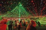 David Richards and his family have put up 502,165 Christmas lights around their home in Canberra, setting a new world record