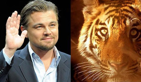 Leonardo DiCaprio has donated $3 million to help save tigers in Nepal