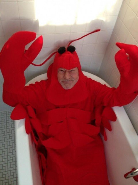 Patrick Stewart has become something of a social media sensation with his Halloween lobster costume
