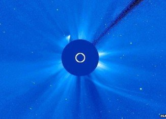 Some part of Comet ISON may have survived its encounter with the Sun