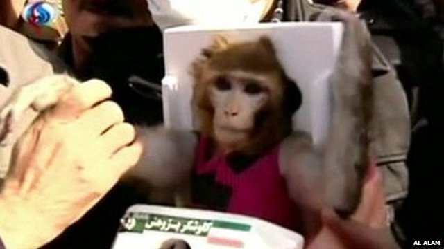 Iran announces it has successfully sent a monkey into space for the second time this year as part of a programme aimed at manned space flight