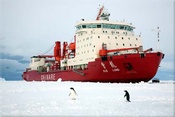 Chinese ice-breaker Xue Long that helped rescue passengers stranded on the Akademik Shokalskiy vessel in Antarctica is now stuck itself