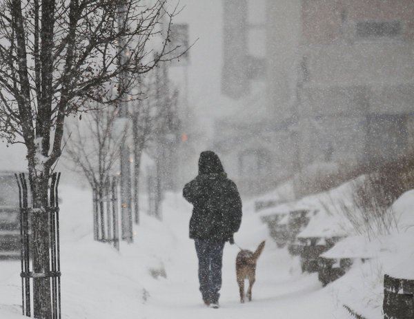The Midwest is bracing for potentially record breaking low temperatures as an Arctic chill brings more freezing weather photo