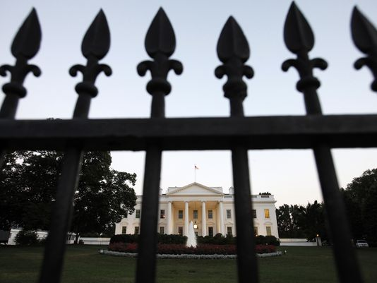 A man has been arrested by the US Secret Service after trying to climb over the White House fence, leading to a security lockdown