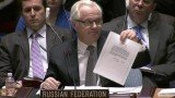 Vitaly Churkin told a Security Council meeting that Viktor Yanukovych wrote Vladimir Putin asking for troops in Crimea