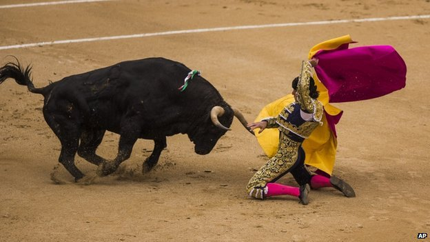 David Mora suffered the worst injuries, as one of the animals rammed its horn into his leg and tossed him into the air at the Las Ventas bullring