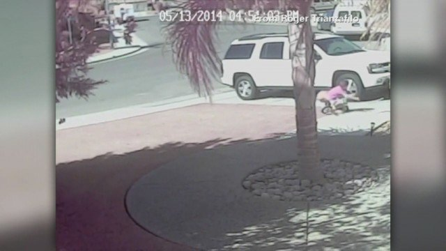 Jeremy Triantafilo was playing in the drive of his Bakersfield, California, home on Tuesday when the dog attacked him