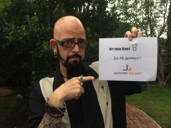Weight loss current news breaking news for Jackson galaxy images