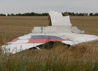 Malaysia Airlines flight MH17 with 295 people on board crashed in Ukraine, near Russian border