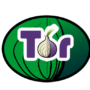 Tor Project: Russia offers $110,000 reward to crack anonymous network