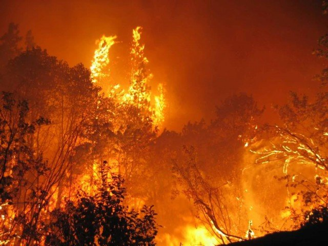 The 2009 Black Saturday fires resulted in Australia's highest ever loss of life from a bushfire