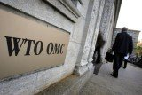 The WTO said the US improperly imposed tariffs on Chinese steel and solar panels