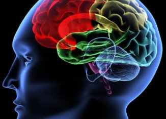Parkinson's disease is the second most common neurodegenerative disorder and the most common movement disorder
