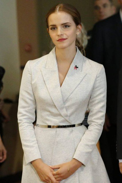Emma Watson launched the HeForShe campaign in a speech at the UN in which she appealed to men to speak out over gender equality