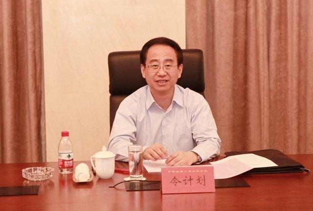 Ling Jinhua investigated