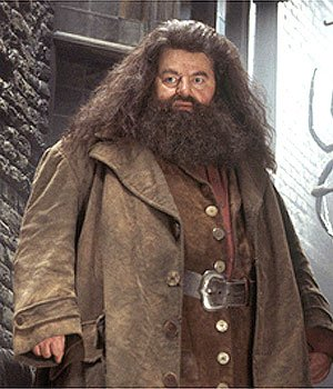 Robbie Coltrane Rubeus Hagrid Harry Potter