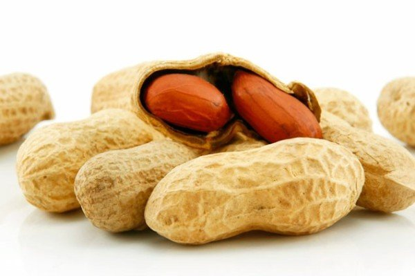 Peanut allergy risk infants