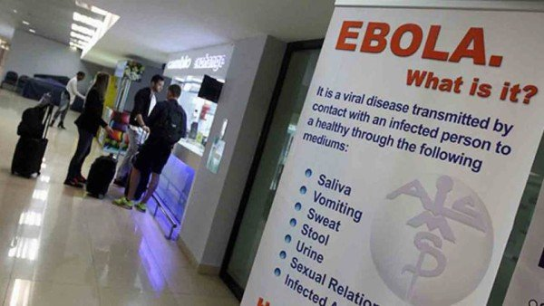 Ebola drug cures monkeys