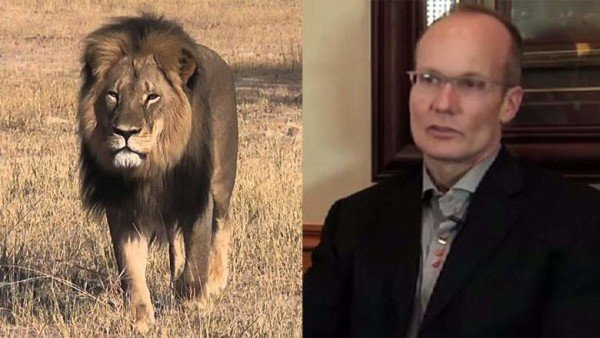 Cecil the Lion killed by Dr Walter Palmer