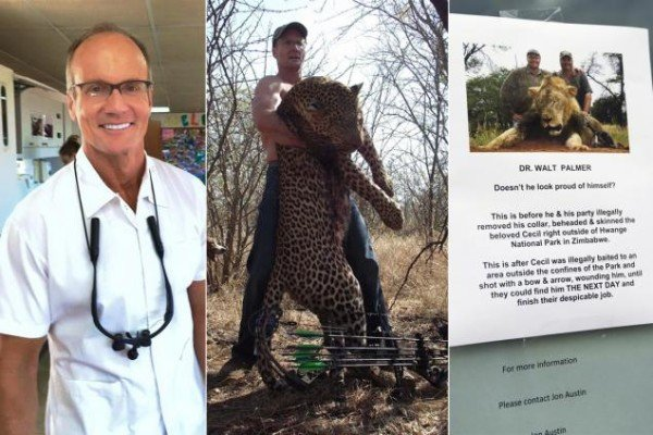 Cecil the Lion killer Walter Palmer