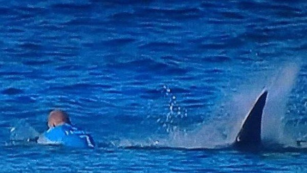 Mick Fanning shark attack J Bay Open