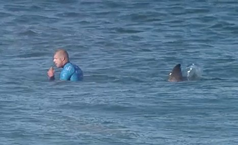 Mick Fanning shark attack July 2015