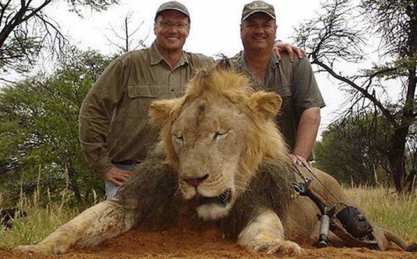 Walter Palmer kills trophy lion