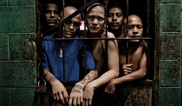 gang violence in prison essays Gangs in prison the aryan brotherhood the aryan brotherhood originates in the cdc (california department of corrections) and bop (federal bureau of prisons).