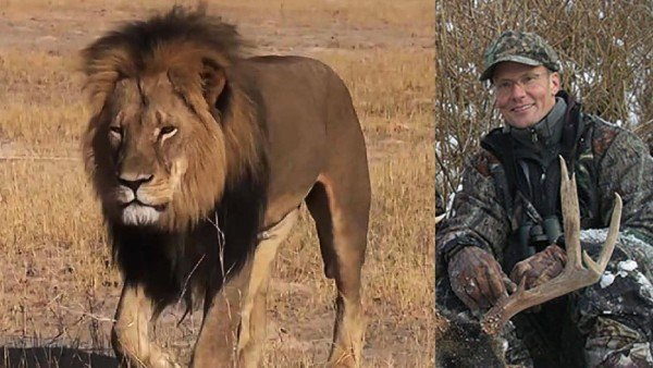 Walter Palmer Cecil the lion hunter