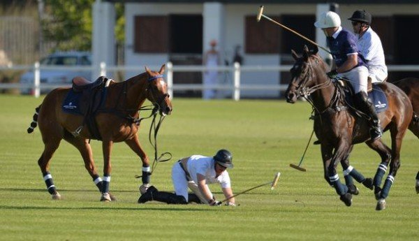 Prince Harry falls off horse South Africa polo match