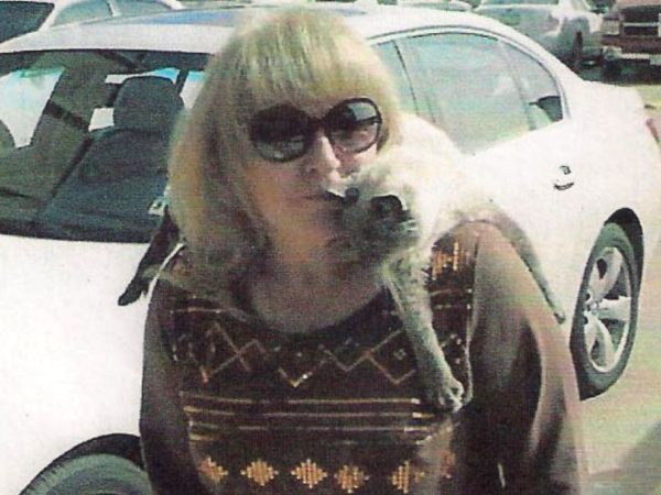 Photo Abc News